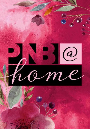 PNB at home mobile banner