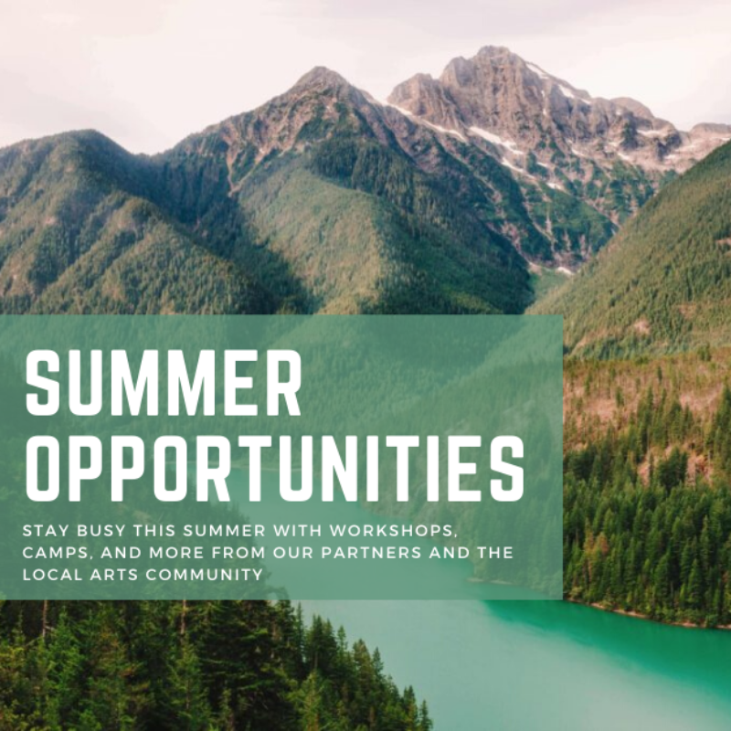 Summer Opportunities graphic 1