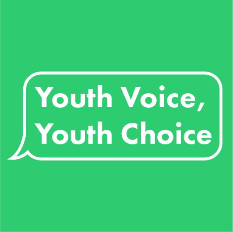 Youthvoiceyouthchoicelogo