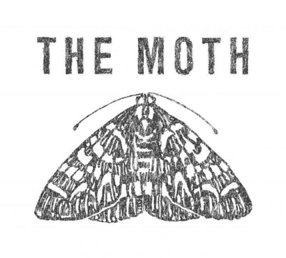 Moth Logo B Grey 720x649