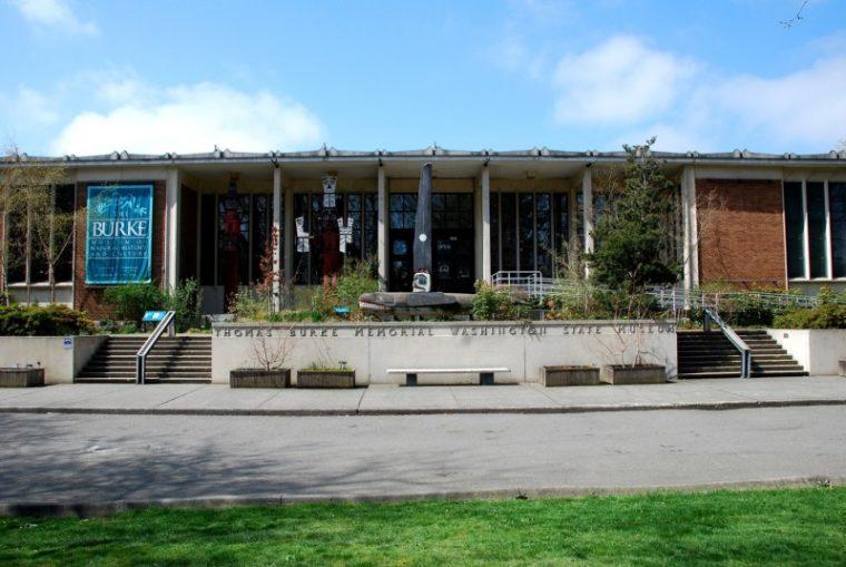 Burke Museum Big